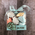 Stampin\' Up! clear acetate treat box idea with Seaside Notions - Jeanie Stark StampinUp