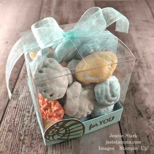 Stampin' Up! clear acetate treat box idea with Seaside Notions - Jeanie Stark StampinUp