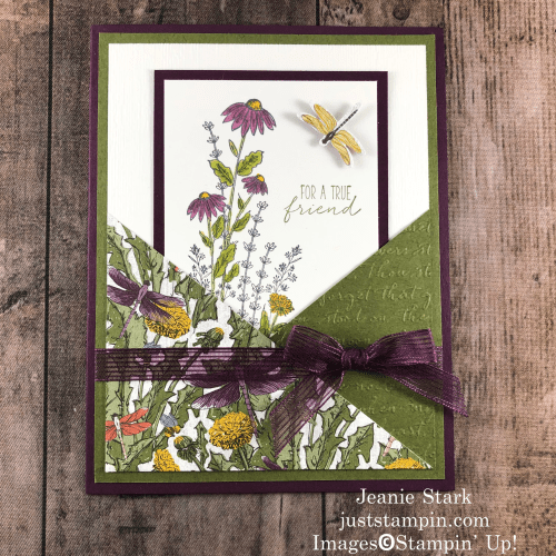 Stampin' Up! Dragonfly Garden pocket card idea for a friend - Jeanie Stark StampinUp