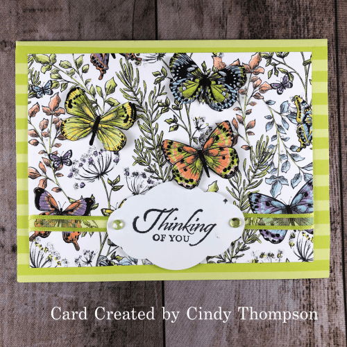 Stampin' Up! Thinking of You butterfly birthday card idea - Jeanie Stark StampinUp