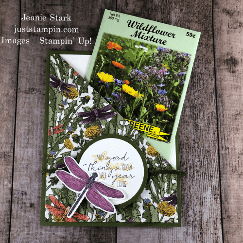 Stampin' Up! Dragonfly Garden seed packet holder/ pocket card - Jeanie Stark StampinUp
