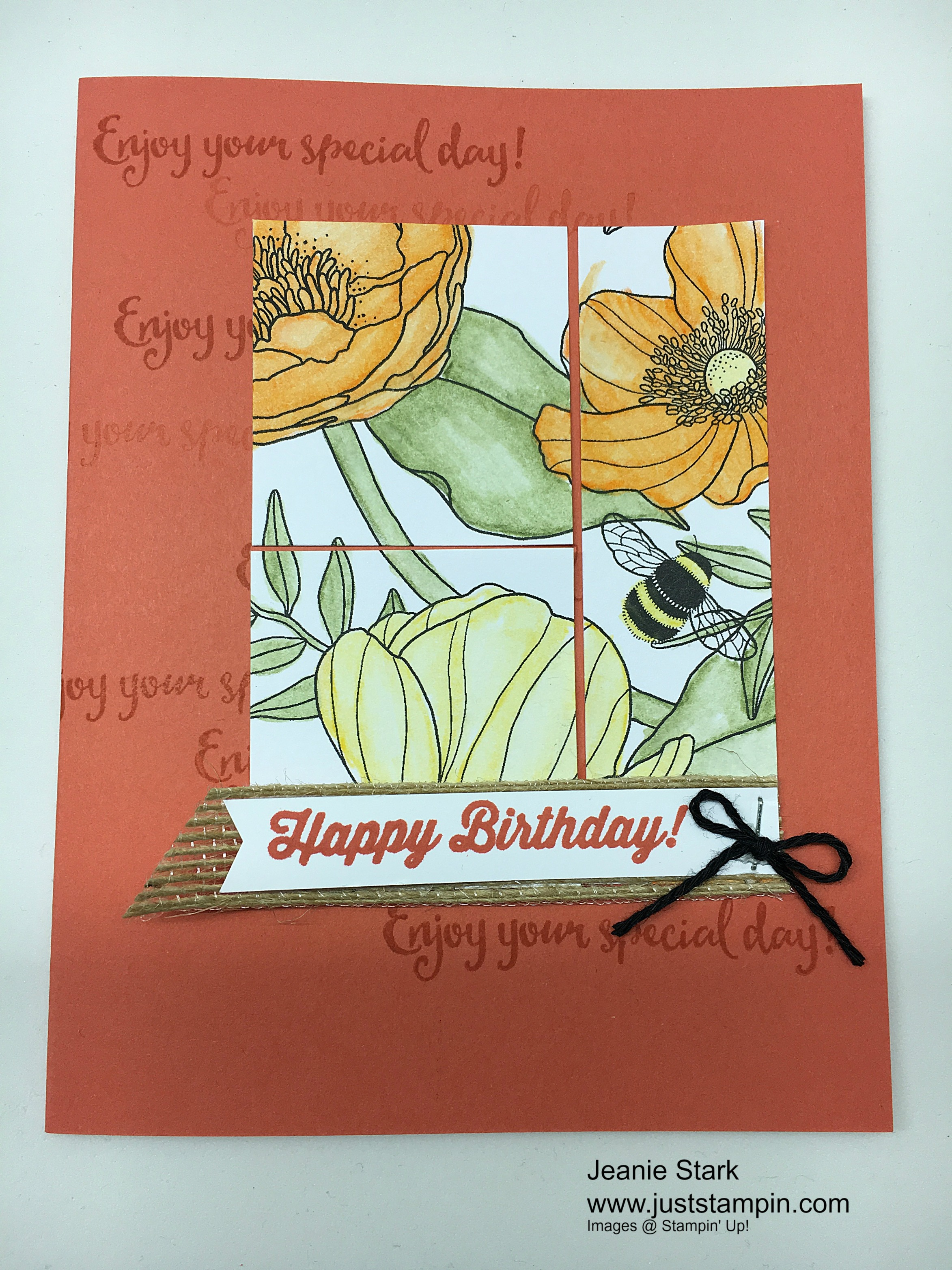 Stampin Up 2017 Occasions Catalog Sneak Peeks Just