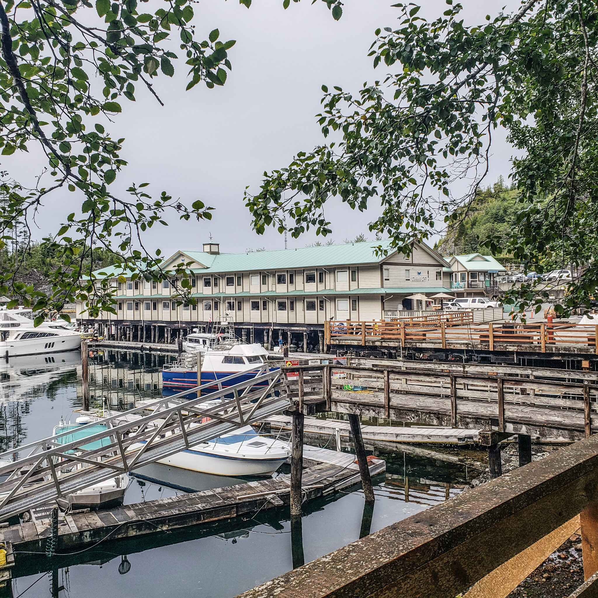 Visit Port Hardy - Vancouver Island North - Explore Canada - Hello British Columbia - Telegraph Cove - Marina