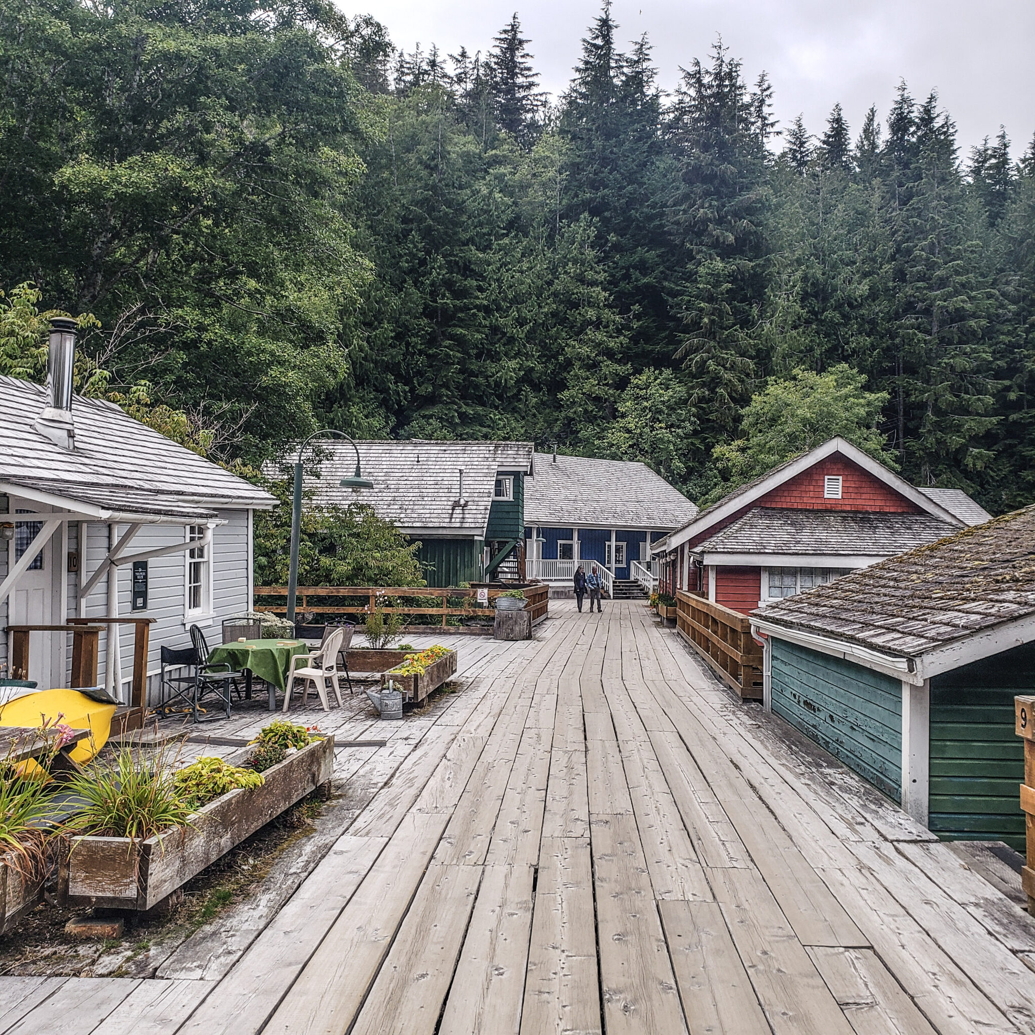 Visit Port Hardy - Vancouver Island North - Explore Canada - Hello British Columbia - Telegraph Cove