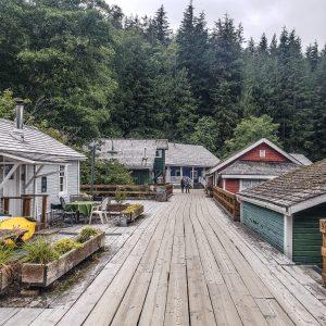 Visit Port Hardy - Vancouver Island North - Explore Canada - Hello British Columbia - Telegraph Cove