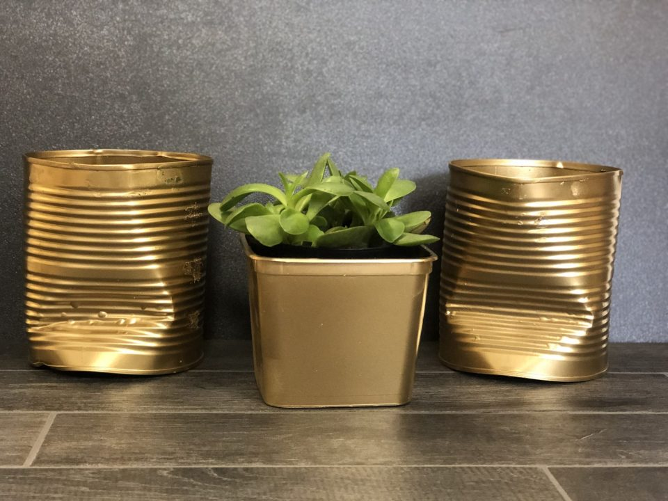Can't find a planters that fits your budget? Make them! Check out our step by step instructions on how to re-purpose tin cans