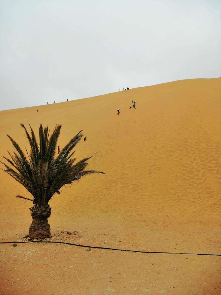 Dune 7, the tallest sand dune in Namibia
