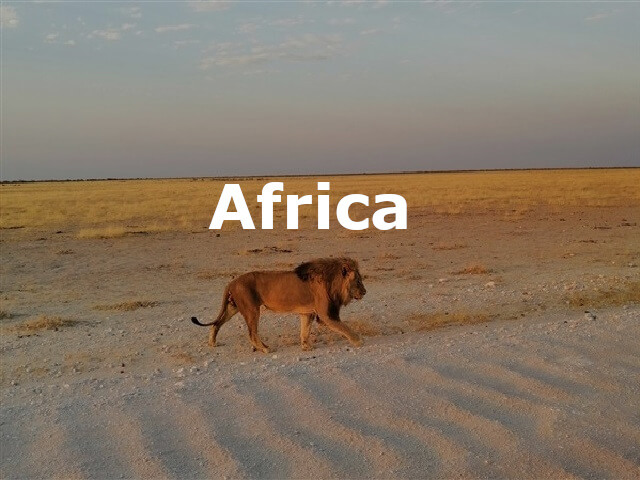 Africa blog posts header