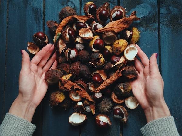 Interesting Health Benefits Of Chestnuts