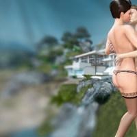 VR 3D Sex Game