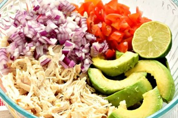 Gluten Free, Dairy Free, and Vegan Avocado Chicken Salad