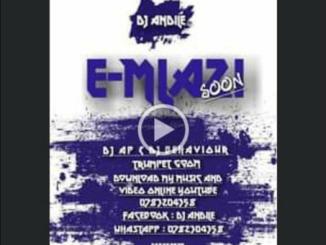 DJ Behaviour & DJ Andile & DJ AP - Mlazi