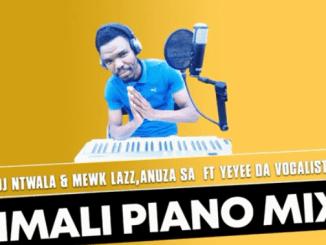 DJ Ntwala & YND Mewk Lazz , Anuza SA - lmali ft Yeyee Da Vocalist (Amapiano Mix)