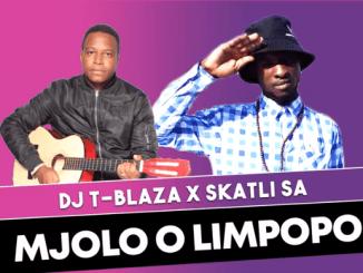 Dj T-blaza x Skatli SA - Mjolo O Limpopo