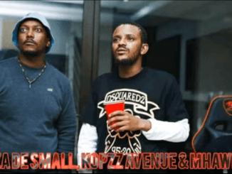 Kabza De Small & Koppz Avenue – Kwa'mtaito (ft Mhaw Keys)