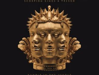 Kabza De Small, DJ Maphorisa, TRESOR ft. Tyler ICU - Cherie (Official Audio)