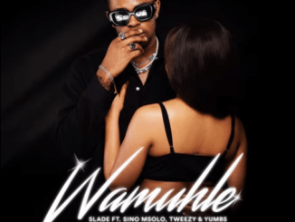 Slade ft. Sino Msolo, Tweezy & Yumbs - Wamuhle (Official Audio)