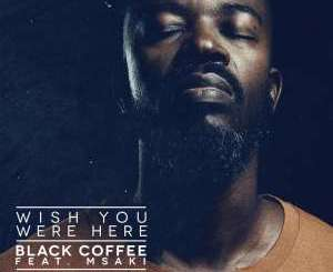 DOWNLOAD MP3 : BLACK COFFEE – WISH YOU WERE HERE (REMIXES) FT. MSAKI