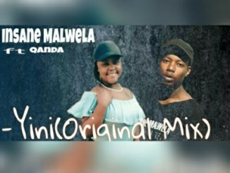 DOWNLOAD MP3 :INSANE MALWELA – YINI (ORIGINAL MIX) FT. QANDA