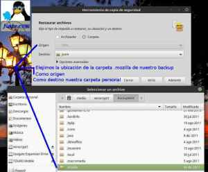 Pasé los datos de Mint 13 a Linux Mint Sonya