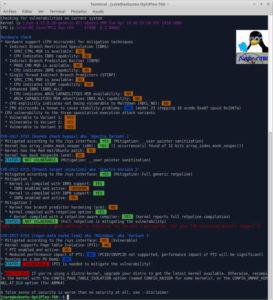 Xubuntu 18.04 y Spectre & Meltdown checker