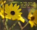 Psalm 103.7 KJV