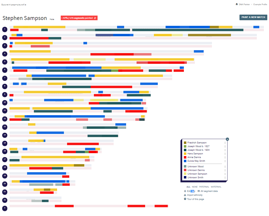 DNA Painter Example Profile