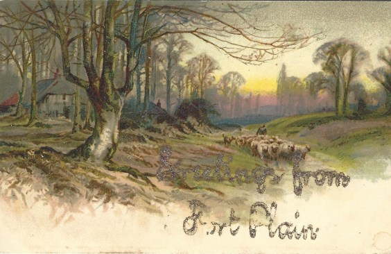 Fort Plain 1