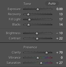 Adobe Lightroom Basic Panel