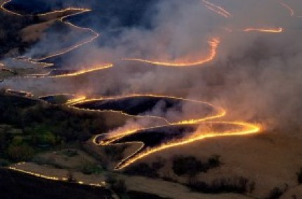 wpid-flint-hills-burning-280x185.jpg