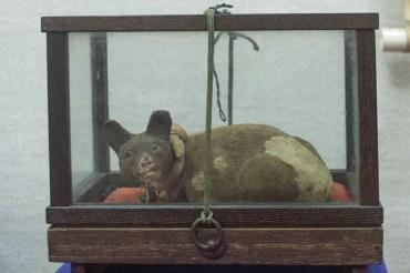 九度山昌幸手彫りの犬