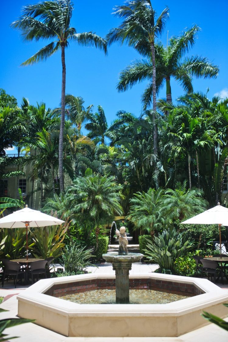 cuppajyo-sf-travel-fashion-lifestylle-blogger-westpalmbeach-beachstyle-resortstyle-resortwear-thebraziliancourthotel-misalosangeles-maxidress-bohochic-2
