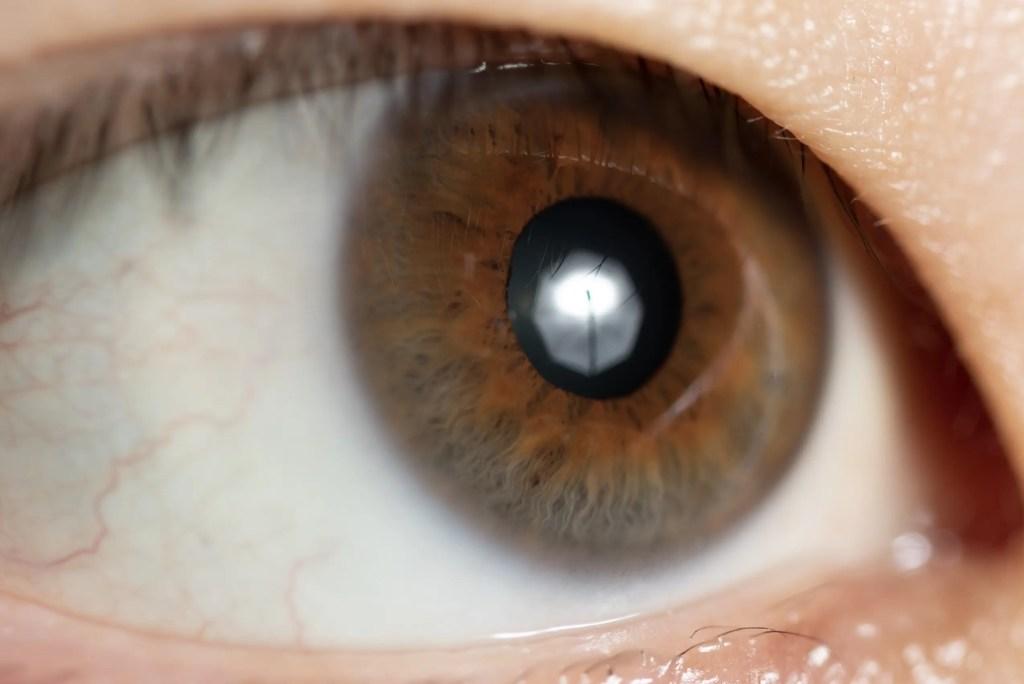 アンブレラは瞳に丸い光(ハイライト)を入れることが出来る