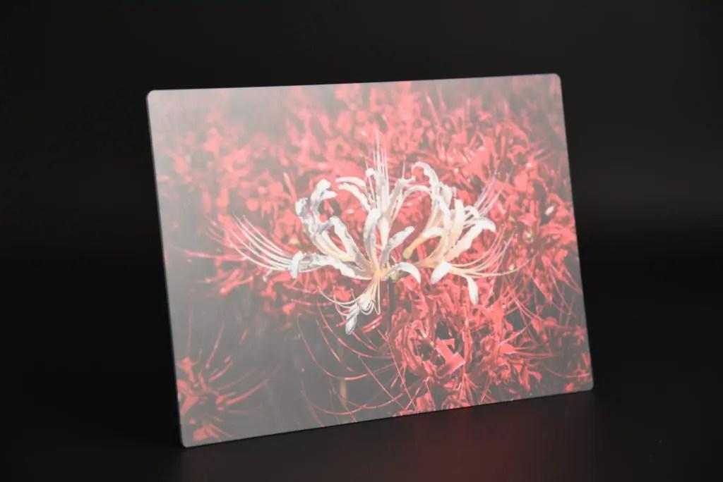 濃い黒も、深い赤も潰れずにハッキリと印刷されていますね!いや、お世辞抜きに現像後の写真がそのままアルミにプリントされています…!