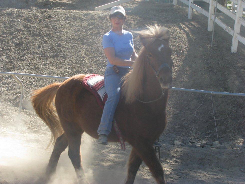 Celia, Heroine of Laughing Pony Rescue