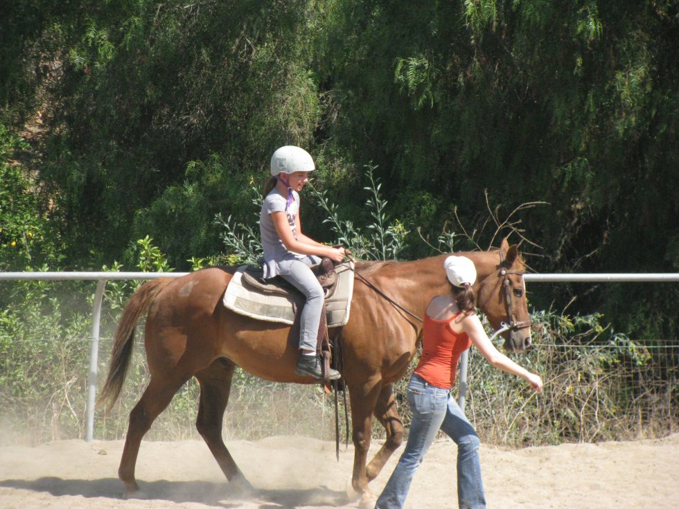 Lessons at Laughing Pony Rescue