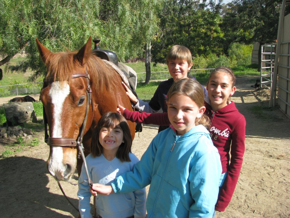 Laughing Pony Rescue Ranch Riders
