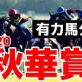 【秋華賞2020予想】有力馬分析&秘密の穴馬候補【今のところ一択】