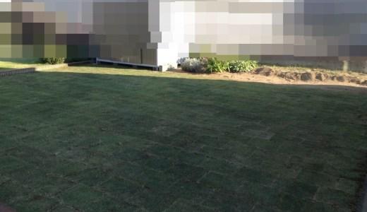 茨城県水戸市【TM9】芝張り実施