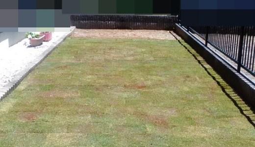 水戸市高麗芝を施工しました