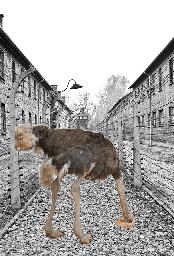 Apathie qui a laissé Holocauste arriver