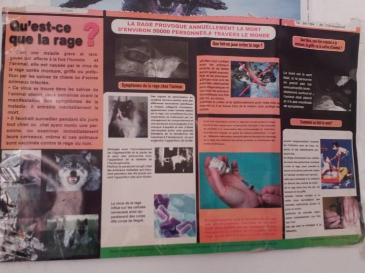 K in Motion Travel Blog, Nouakchott, Mauritania. Yellow Fever Vaccine