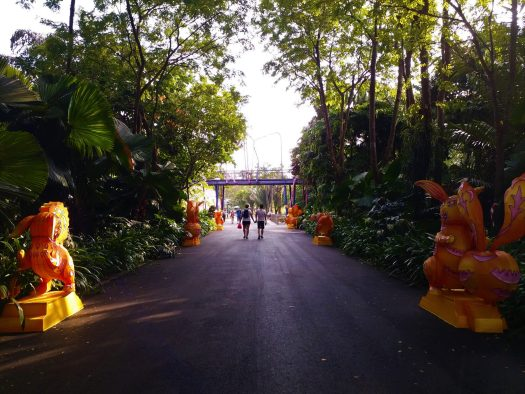 K in Motion Travel Blog. Petty Superheroes and Supertrees in Singapore. Gardens By The Bay Walk