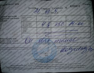 K in Motion Travel Blog. Travel to Turkmenistan - Getting the Visa. Turkmenistan Border Receipt Number 2