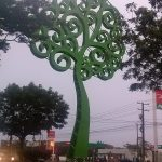 K in Motion Travel Blog. Love and Volcanoes in Nicaragua. Managua. Big Green Tree