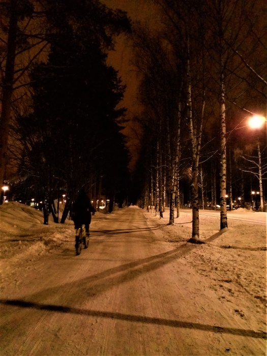 K in Motion Travel Blog. Chasing the Aurora Borealis in Finnish Lapland. Cycling on a Snowed Over Footpath