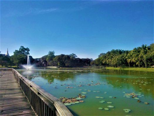 K in Motion Travel Blog. Mesmerising Lakes Around the World. Kandagwyi Lake, Bogyoke Park, Yangon Myanmar
