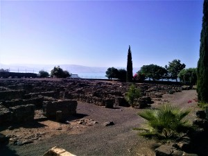 K in Motion Travel Blog. Religious Sites and Nature of Northern Israel. Ruins and Gardens at Capharnaum