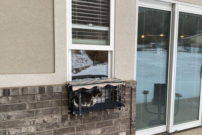 window mounted catio patio outdoor cat enclosure