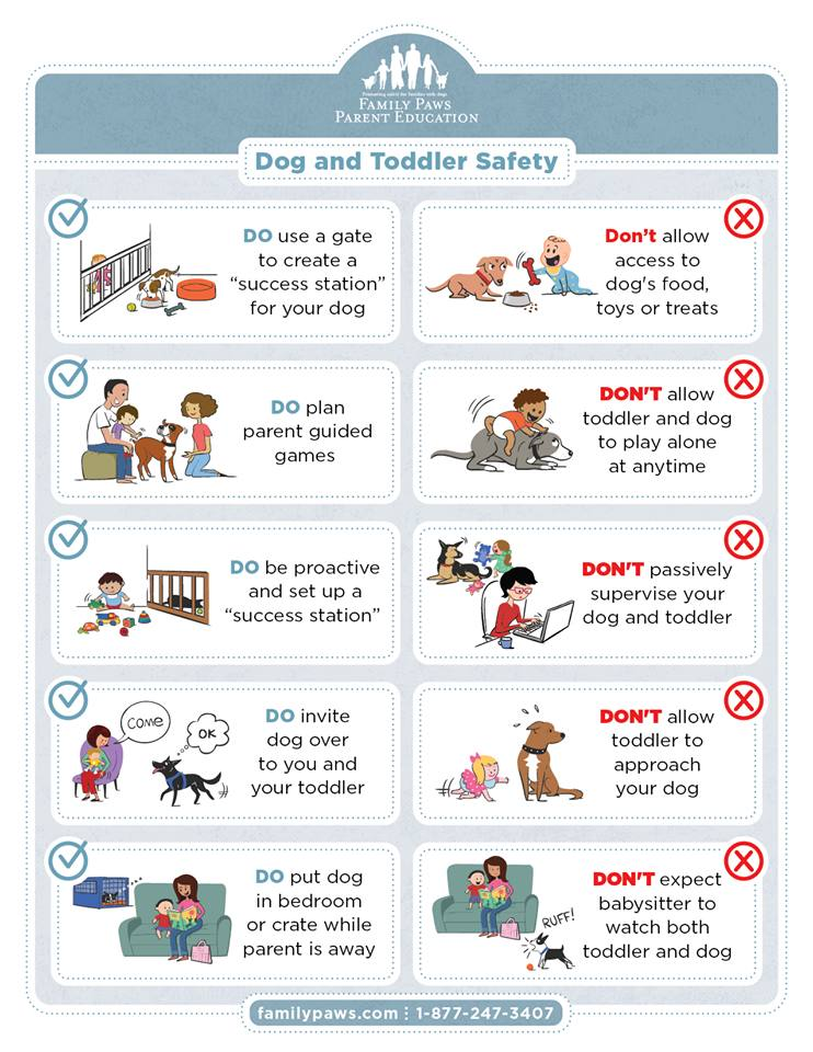 dogs_and_toddlers